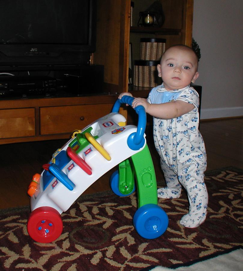 Name:  Max 5 months 1 small.jpg Views: 2137 Size:  594.8 KB